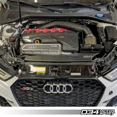Engine_cover_carbon_ fiber_overlay_audi_8v5_rs3_8s_ttrs_034-1ZZ-0009-8